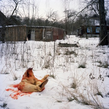 Rena-Effendi-Still-Life-005-690x694