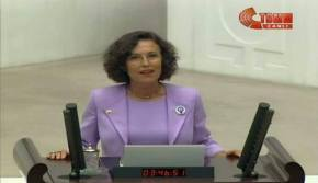 Turkey's Feminist MPs
